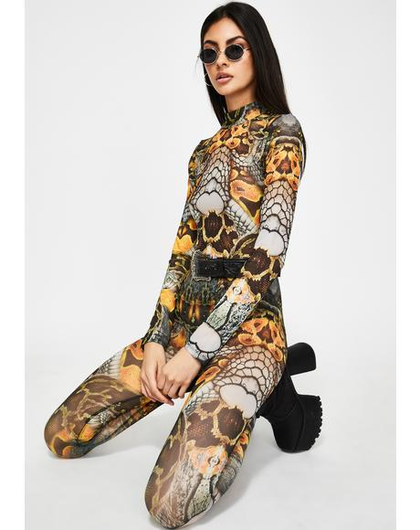 Snake Print Mesh Leggings