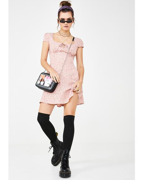 Dusty Roses Mini Dress