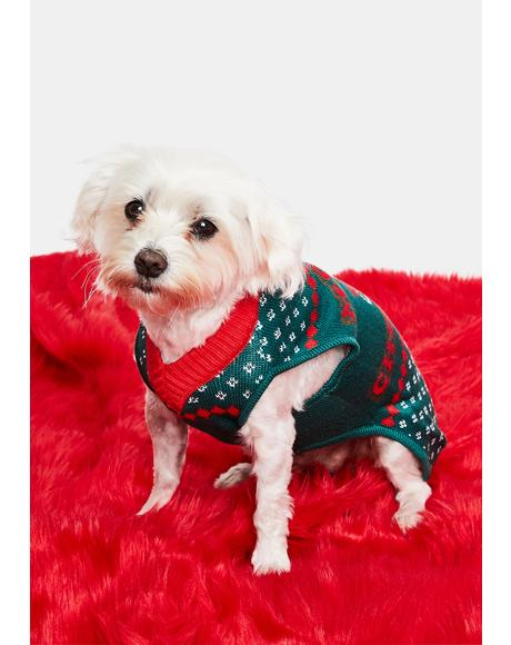 Little Present Dog Sweater