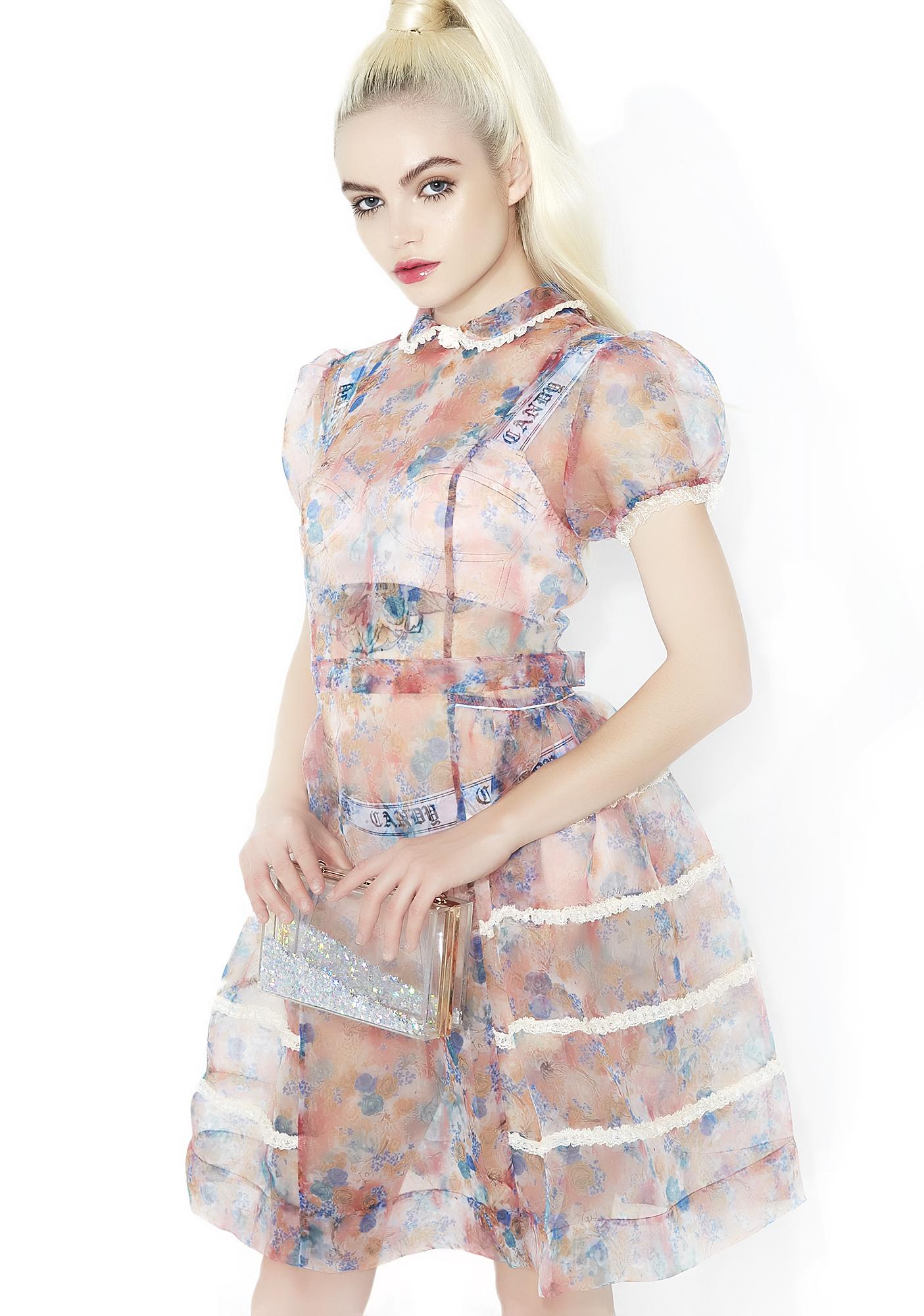 Sugar Thrillz Rococo Rose Sheer Dress