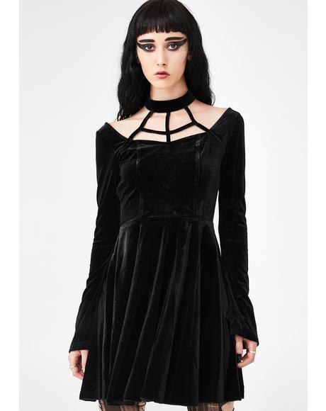Cleome Velvet Dress