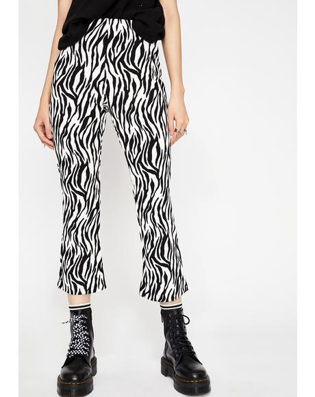Wildest Ways Zebra Flares