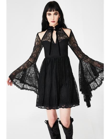 She's Stardust Lace Dress