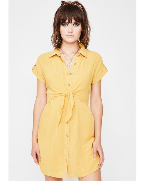 On A Sundaze Shirt Dress