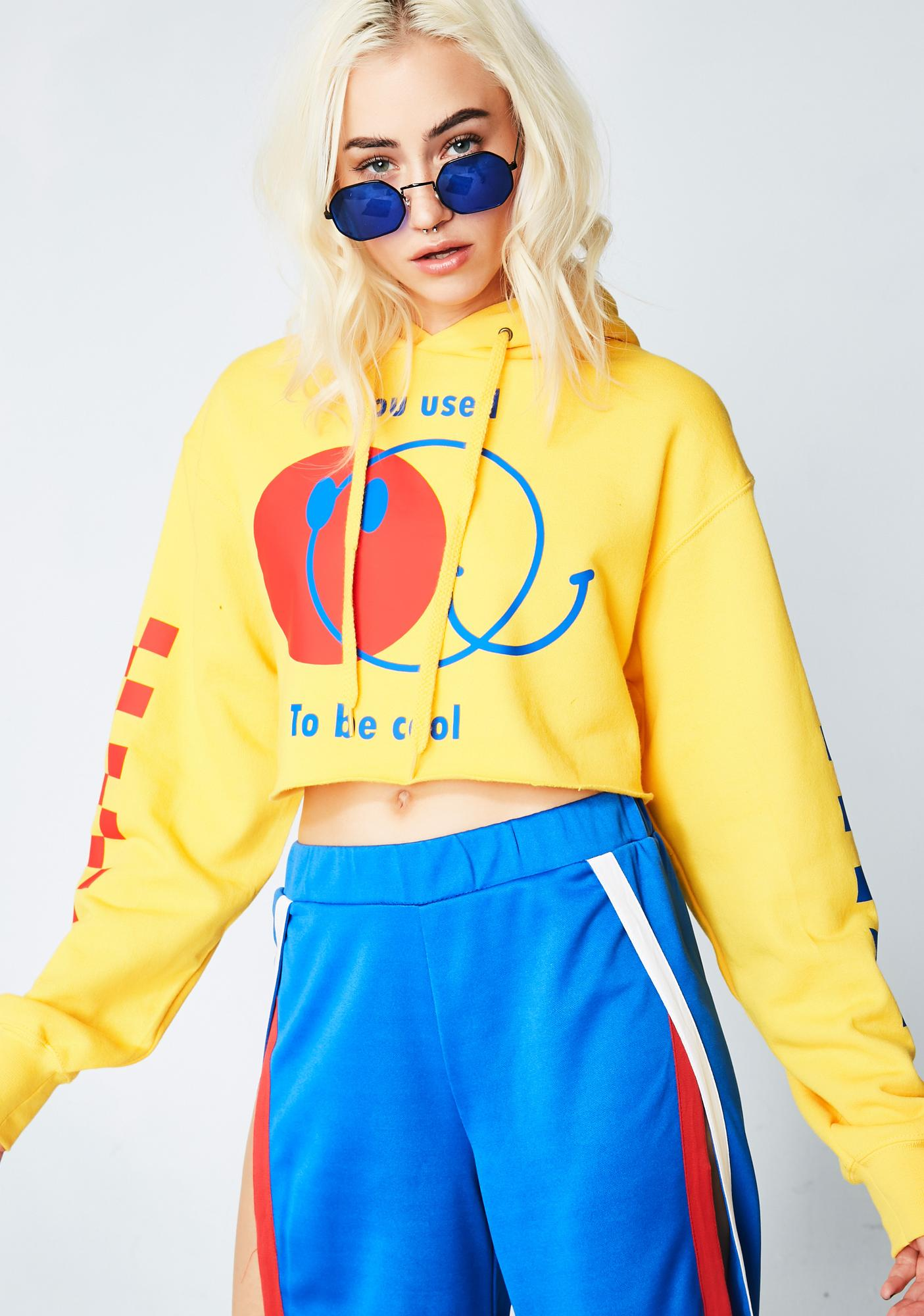 Fake Trash You Used To Be Cool Cropped Hoodie