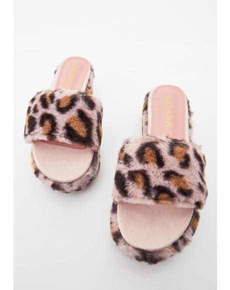 Sweet Kitty Platform Slides