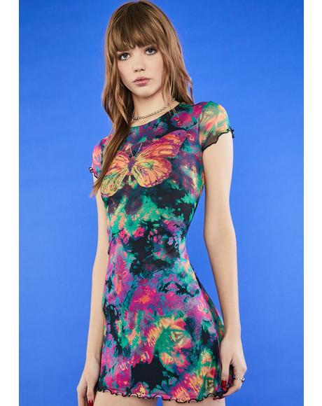 Social Butterfly Mesh Dress
