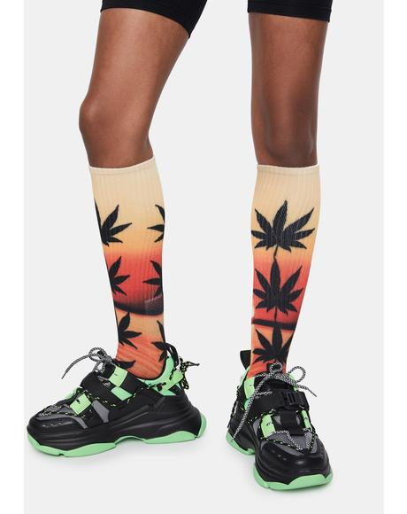 Elemental Gradient Crew Socks