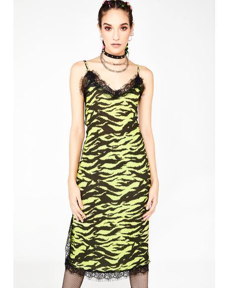 Zebra Lace Slip Dress