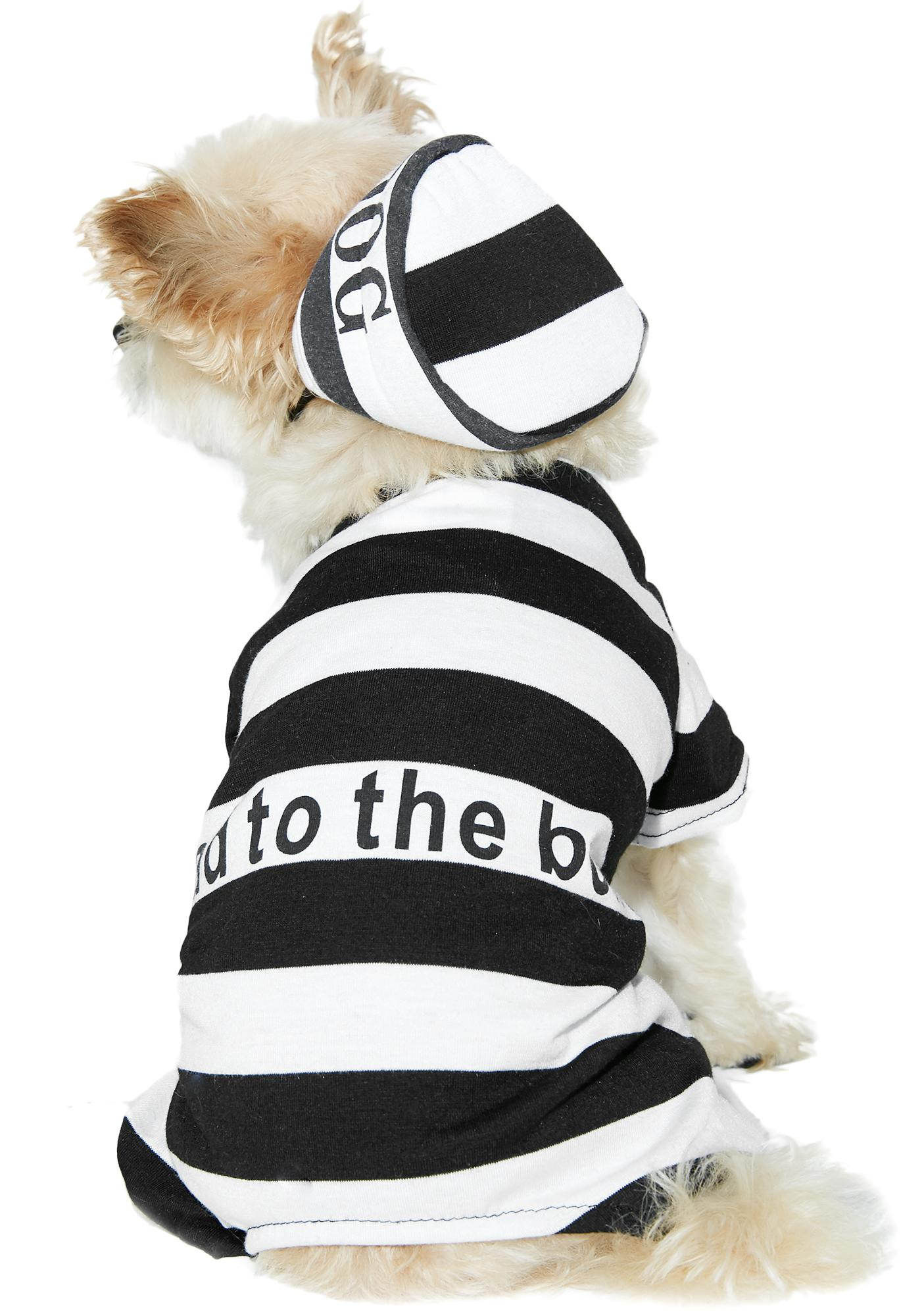 In The Doghouse Costume