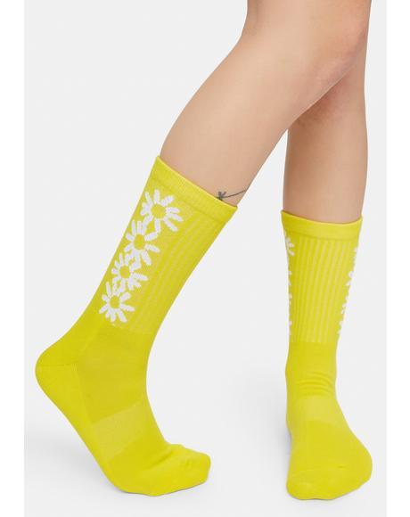Daisy Crew Socks