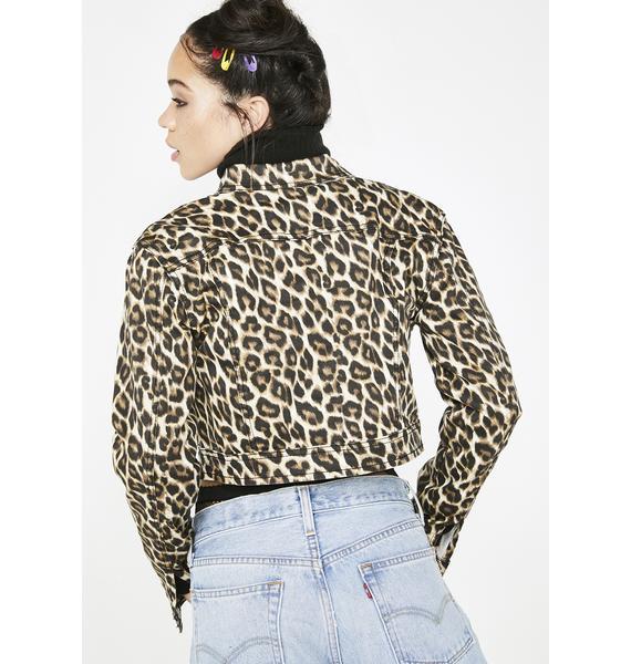 Feeling Catty Leopard Jacket