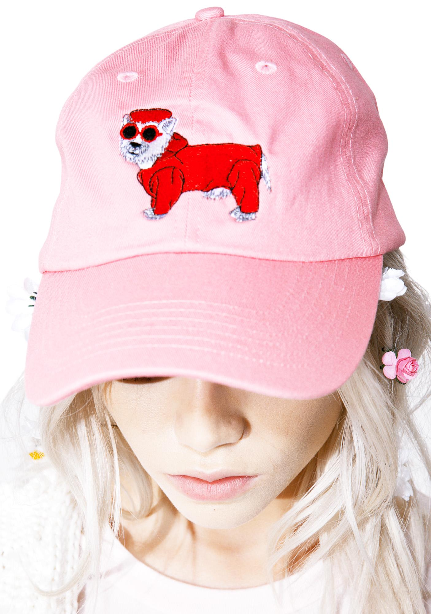 Cool Dog Dad Hat