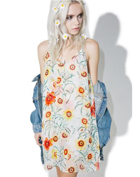 Wild Daisy Jumper Dress