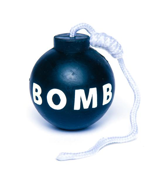 Bombs Away Dog Toy