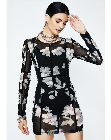 Floral Freeze Frame Sheer Dress