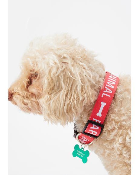 Round Of Appaws Medium Dog Collar