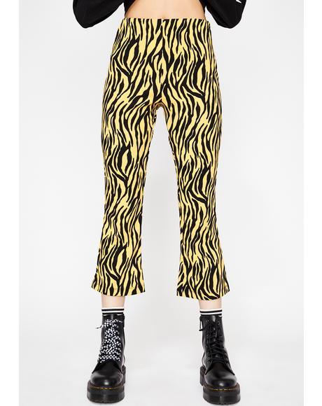 Bodak Wildest Ways Zebra Flares