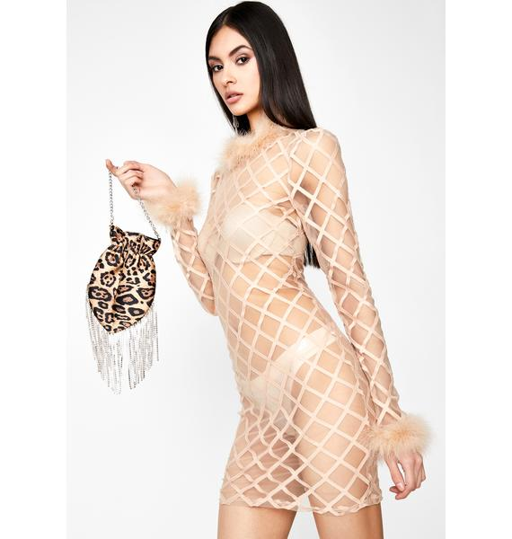 Lines Of Temptation Sheer Dress