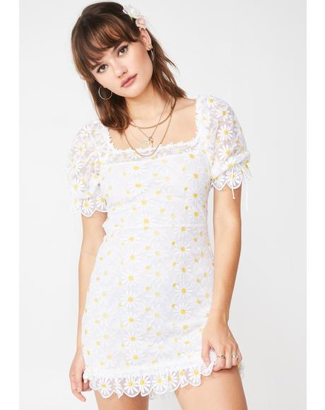 Brulee Daisy Mini Dress