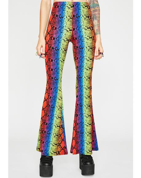 Python Power Flare Pants
