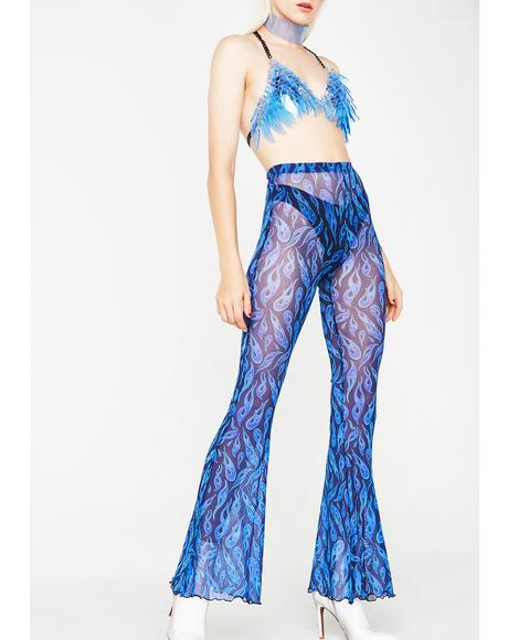 Cobalt Playin' With Fire Sheer Pants