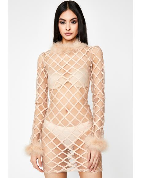 Lines Of Temptation Sheer Dress