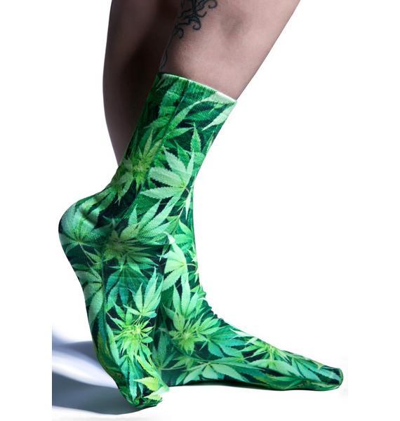 High Lyfe Socks