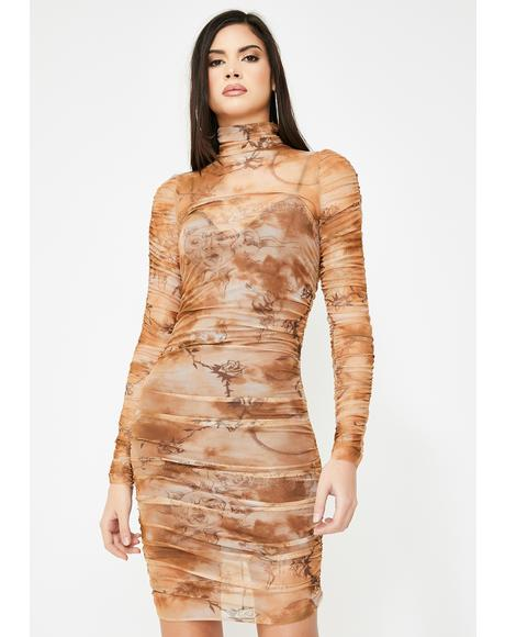 Amara Ruched Mesh Dress
