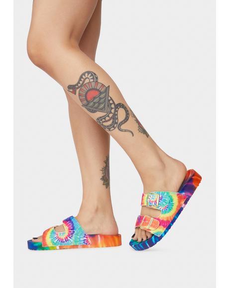 Rainbow Sideline Stare Slides