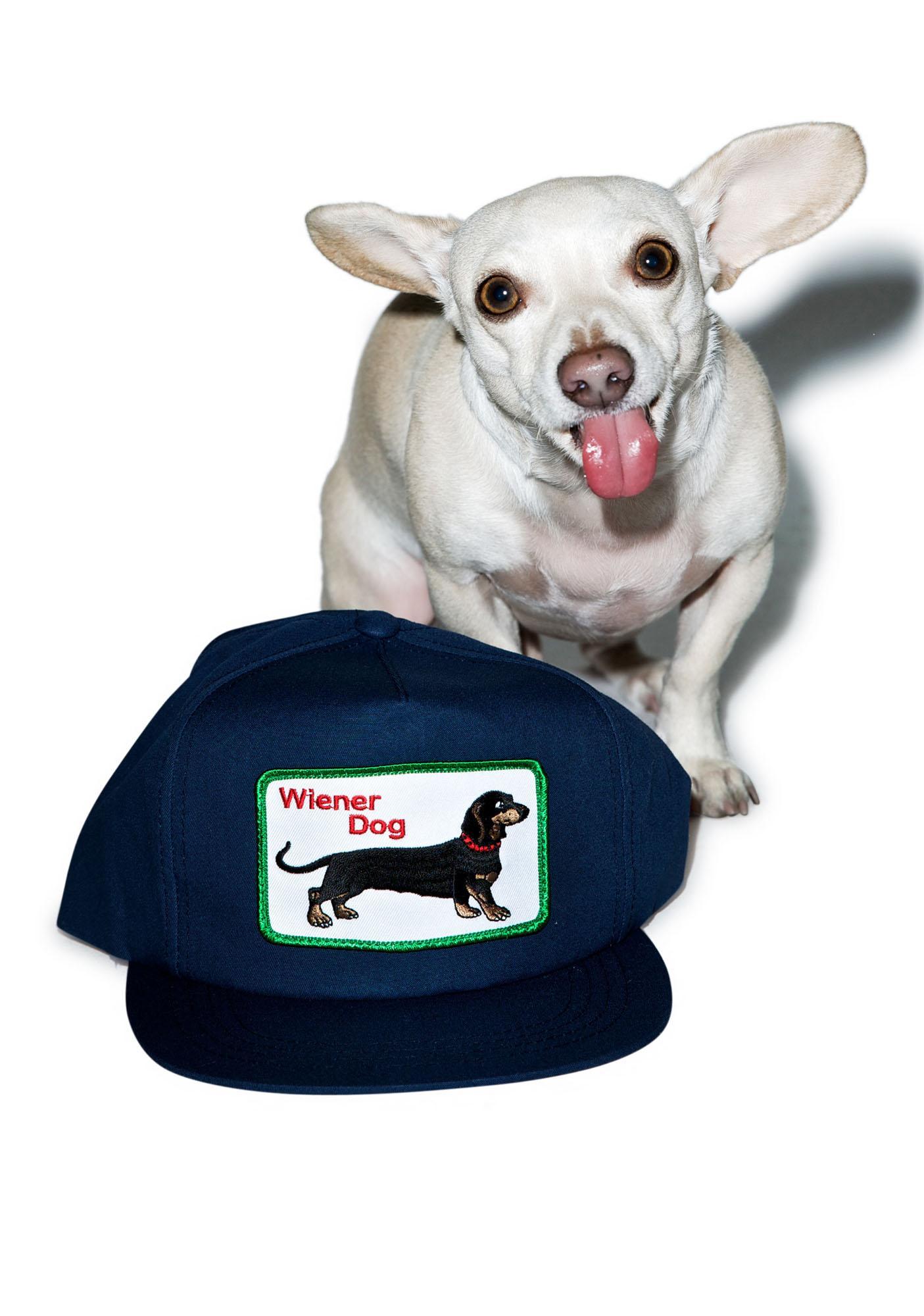 Wiener Dog Snapback