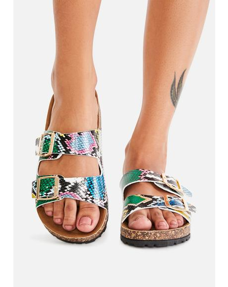 Mamba Sandy Paradise Buckle Sandals