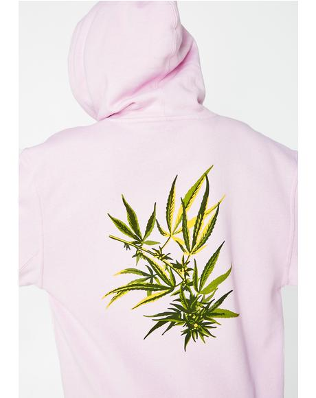 Tropical Plants Pullover Hoodie
