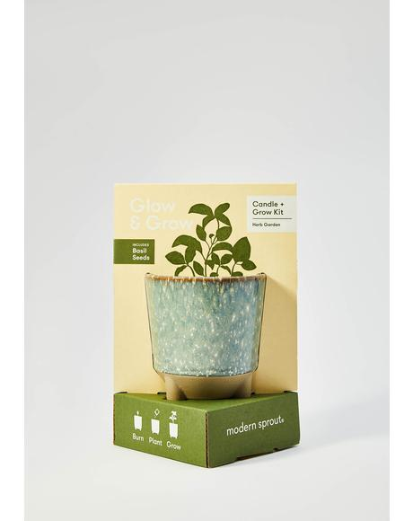 Herb Garden Basil Grow Kit