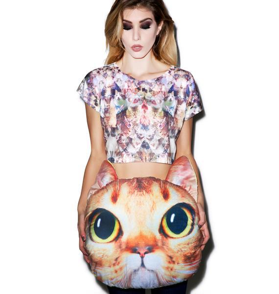 Orange Cat Pillow