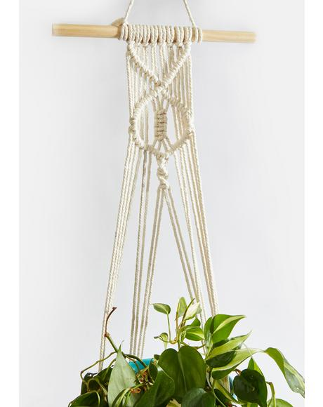 Boho Blooms Crochet Hanging Planter