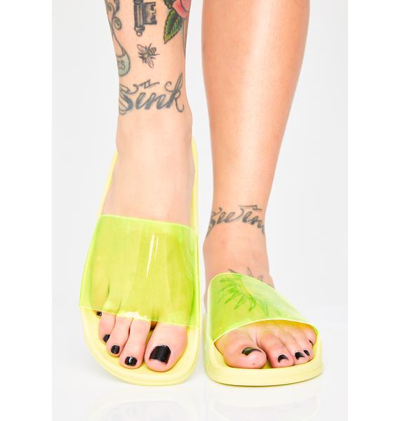 Lime Boardwalk Blowups Slides