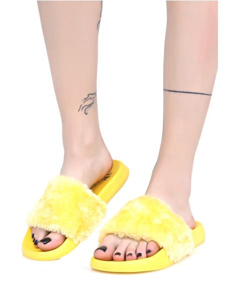 Canary Furry Slides