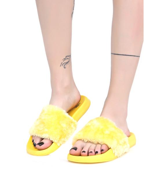 Lust For Life Canary Furry Slides
