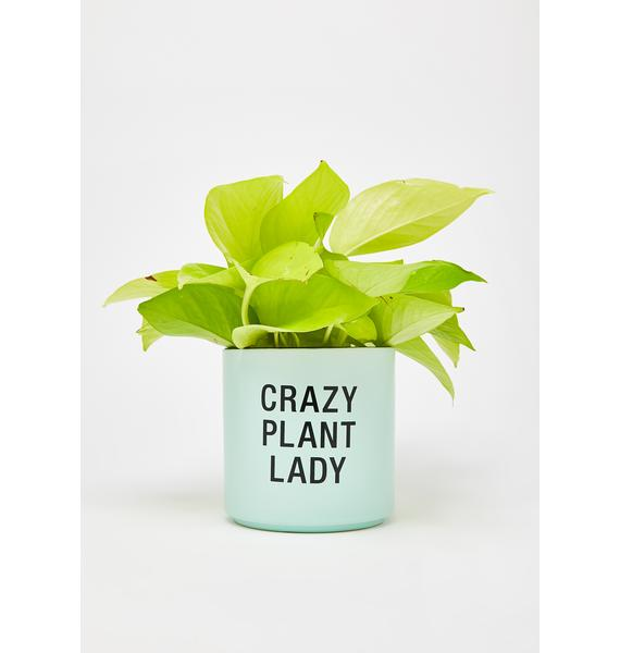 Crazy Plant Lady Planter