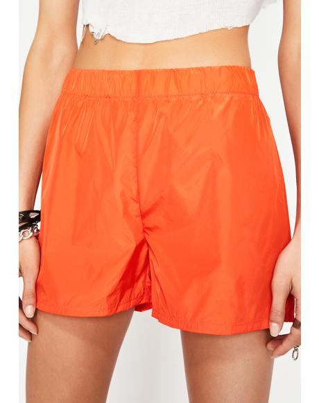 Alley Cat Nylon Shorts