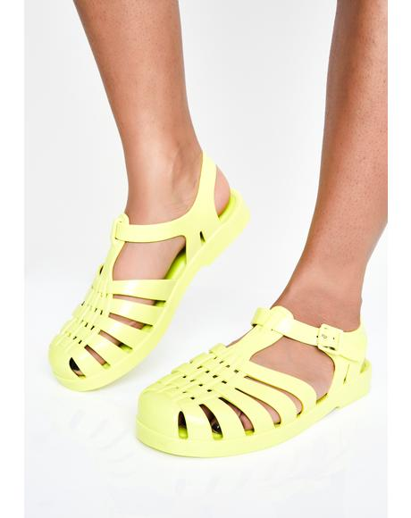Possession Jelly Sandals