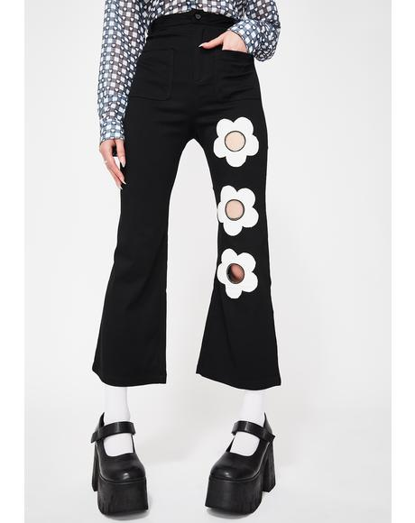 Judy Bloom Wide Leg Pants