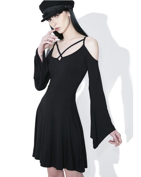 Seance Skater Dress