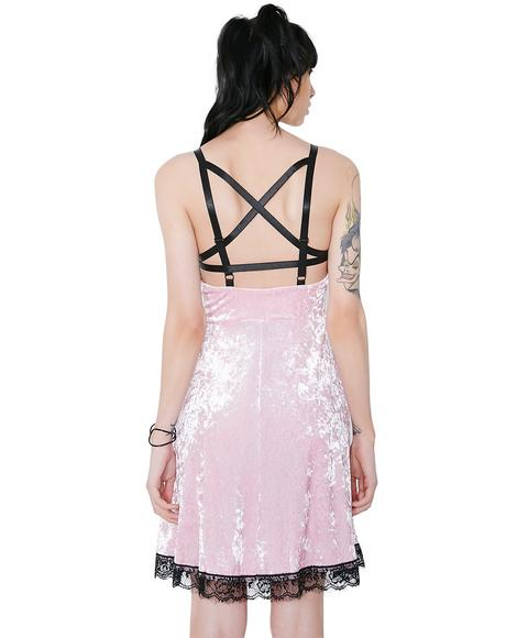Pink Adora Velvet Crush Dress