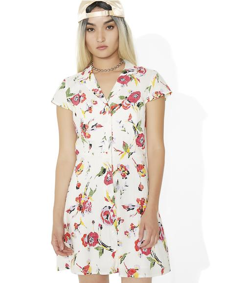 Desi Dress