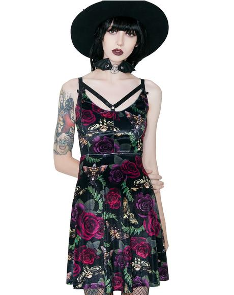Lydia Nightlife Dress
