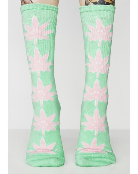 Julep Plantlife Mr. Nice Guy Socks