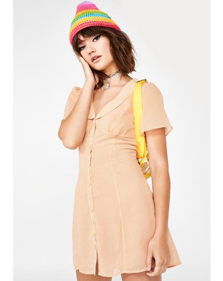 Shire Cutie Gingham Dress