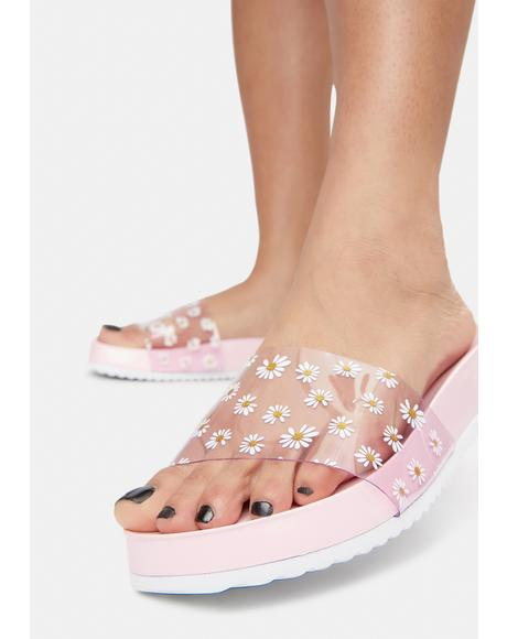 Bubblegum Off The Daisy Chain Slides
